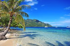 Tropical sand beach in the South Pacific by Rob Cicchetti on 500px