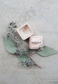 Electric Evening :: Leigh+Shawn The loveliest details for the loveliest gems in a Mrs. Box to boot! Sage Wedding, Wedding Ring Box, Wedding Shoot, Wedding Day, Wedding Jewelry, Bridal Jewellery, Wedding Album, Wedding Bride, Wedding Table