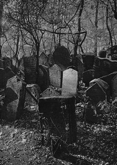 Halloween, Autumn, and all things creepy and macabre. Cemetery Headstones, Old Cemeteries, Cemetery Art, Graveyards, Dark Photography, Dark Places, Samhain, Abandoned Places, Belle Photo