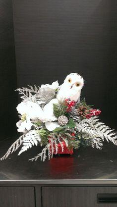 White Christmas Owl...Robin Evans