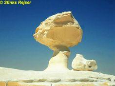 """Den Hvide Ørken  Der starter ca. 20 km efter Farafra i retning mod Bahariya-oasen, er et populært udflugtsmål fra begge oaser og involverer som regel overnatning i det fri. Klipperne her - Ørkenens -Isbjerge- er farvet hvide af kridt.  - Ud over dette i 'Ny Ørken """", som kun er tilgængelig for 4WD eller kamel, bliver landskabet endnu hvidere. De kæmpe store sten er højere og større og overalt underlige former synes, der kan minde dig om en kylling eller en høg, en trup af dansere eller en…"""