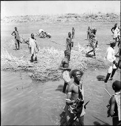 Shilluk people on river bank, Southern Sudan, Upper Nile, 1947-1951