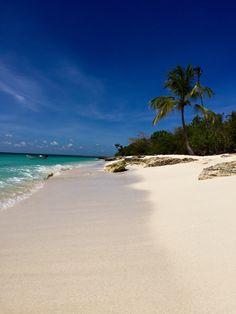 Sanoa Island, Dominican Republic!