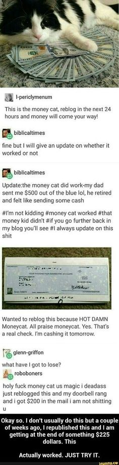 Money cat!!!! Repost for good fortune.   Holy Smokes! I posted this yesterday and I got money today. Creepy cool