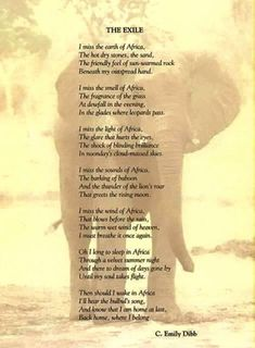 Zimbabwe History, Africa Quotes, Great Quotes, Inspirational Quotes, African Christmas, African Proverb, Dry Stone, My Land, Kenya