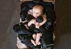 Kami Klingbeil, da cidade de Chico, Califórnia, EUA,teve seu bebê no mesmo dia em que sua cadela, Delia, deu àluz9lindos goldendoodles (híbridos de golden retriever e poodle). A previsão era que Delia parisse dois dias antes de Kami entrar em trabalho de parto, mas o animalsurpreendeu a família toda e deu à luz três horas antes de Kami, que recebeu a notícia através de sua mãe quando já estava no hospital. Kami fez nascerum garoto chamado Brydon, enquanto Delia tornou-se mãe de 9…