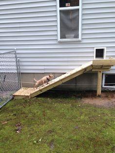 ideas diy dog run fence yards Dog Run Fence, Diy Dog Fence, Diy Dog Gate, Pet Gate, Doggie Gates, Outdoor Dog Area, Backyard Dog Area, Backyard Ideas, Backyard Projects