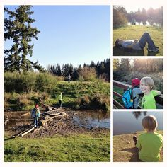 Hiking Oregon With Kids: Trail at Aumsville Ponds County Park Good school holiday or after dinner summer hike School Holidays, School Fun, Splash Park, County Park, Skate Park, Oregon, Trail, Hiking, Explore