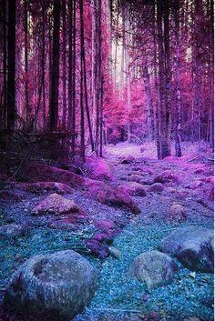 Trees landscape violet turquoise