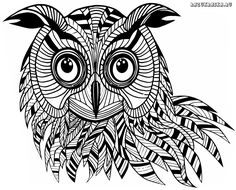 Die 268 Besten Bilder Von Eule Owls Coloring Books Und Coloring Pages