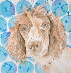 Special dotty dog art spaniel. Dotty Dog Art commissioned pet portraits. Dog Art. watercolour dog art.
