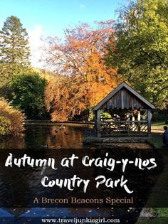 Autumn at Craig -y-nos Country Park, Brecon Beacons, from a travel blog by www.traveljunkiegirl.com