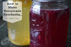Homemade Kombucha Recipe | stupideasypaleo.com Going to try this method of making flavored versions..purees fruit and then freezes in cubes and adds to each bottle.