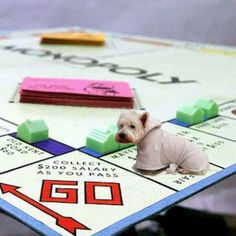 Everyone wants to be the Dog in Monopoly!