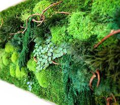 Les-tableaux-de-vegetations-vivantes-de-Erin-Kinsey-8 Les tableaux de végétations vivantes de Erin Kinsey