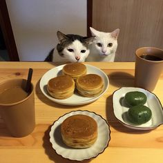 naomiuno @naomiuno おはよう焼き饅頭☀...Instagram photo | Websta (Webstagram)