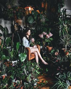 Urban Jungle - plants - green mood - vegetal