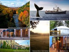 Trying to convince husband we should book a fancy fall package for our October visit to Cabot Trail, Autumn Theme, Nova Scotia, Resort Spa, Weekend Getaways, Wilderness, Places To Visit, October, Husband
