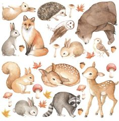 This beautiful woodland animals individual wall decal set is the perfect way to create a forest wonderland in your little ones bedroom or playroom! Ideal for a neutral themed space.Each set includes 2 x fawn (ranging from high), 1 x bear hi Forest Animals, Woodland Animals, Baby Animals, Cute Animals, Animal Wall Decals, Fabric Birds, Woodland Creatures, Watercolor Animals, Painting & Drawing
