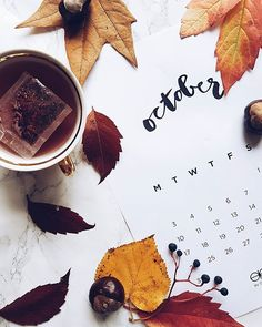 O c t o b e r  my favorite color  Have a great week everyone  ------------------------------------------------------------------------------------------------------------- #monday #goodmorning #autumn #fall #october #leaf #tea #leaves #vsco #vscocam #igers #flatlay #flatlayoftheday #onthetable #blog #blogger #vscogood