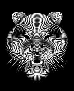 Creative Black and White Fonts Plus Line Illustrations by Patrick Seymour Patrick Seymour, Op Art, White Art, Black And White, Tiger Illustration, Tiger Design, Illusion Art, Art Graphique, Geometric Designs