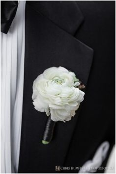 The boutonnieres will be white carnations wrapped in black ribbon with the stems showing.