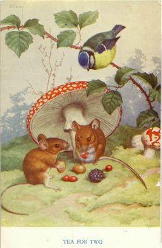 Medici Postcard Pk Mice under Amanita Mushroom- Tea for Two, Noel Hopking Illustration Mignonne, Children's Book Illustration, Book Illustrations, Vintage Cards, Vintage Postcards, Marjolein Bastin, Pet Mice, Mushroom Art, Photo D Art