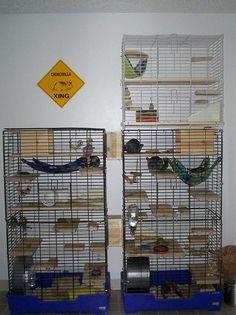 DIY Chinchilla Cage | homemade chinchilla cages                                                                                                                                                                                 Mais