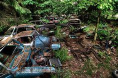 chatillon-car-graveyard-abandoned-cars-cemetery-belgium-11