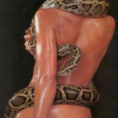 Find images and videos about sexy, model and snake on We Heart It - the app to get lost in what you love. Medusa, Newsha Syeh, Snake Girl, Red Aesthetic, Stevie Nicks, Fashion Photography, Photography Women, Glamour, Photo And Video