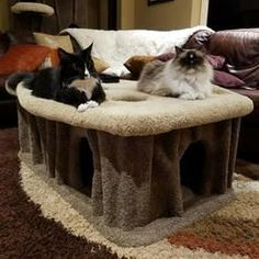 "KittycatCondos 25"" Cat Condo - Perch Color: Coffee, Body Color: Green #catsdiycondo"