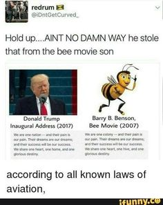 Hold up.AINT NO-WAY he stole that from the bee movie son Donald Trump Barry B. Benson, according to all known laws of aviation, - iFunny :) Funny Shit, Stupid Funny Memes, Funny Relatable Memes, Funny Posts, The Funny, Funny Quotes, Funny Stuff, Random Stuff, Funny Gifs