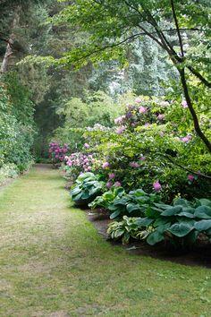 Easy Garden Design Ideas You Can Do Yourself Garden Shrubs, Shade Garden, Garden Landscaping, Garden Borders, Garden Paths, Beautiful Landscapes, Beautiful Gardens, Beautiful Flowers, Cottage Garden Design