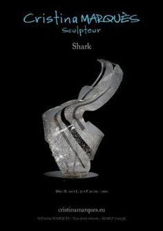 Il y a une certaine cruauté dans cette sculpture. Le Plexiglas a pris l'apparence d'une peau sur laquelle on peut voir les blessures, les rides, les veines et les vaisseaux dessinés. Son mouvement, agressif, puissant et ses couleurs pures font l'effet de morsures sur l'âme. C'est une forme stylisée du féroce requin, animal mythique, symbole de la force de la nature, capable de nous faire ressentir le sentiment du sublime.
