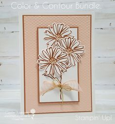 Carussell Crafts: Colour Creations Week 11 - Cinnamon Cider Fun Fold Cards, Folded Cards, Color Contour, Wink Of Stella, Stampin Up Catalog, Flower Center, Stampin Up Cards, Creative Art, I Card