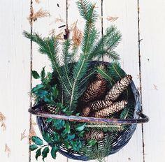winter in a bucket
