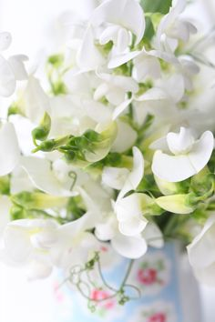 Lovely sweet peas always remind me of my sweet grandmother-in-law.