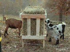 Awesome little hay feeder for goats or other livestock. I will add a tin roof to mine. Cabras Boer, Goat Hay Feeder, Goat Pen, Goat House, Goat Care, Dwarf Goats, Raising Goats, Mini Farm, Goat Farming