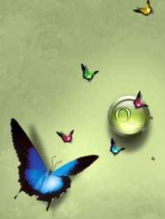 Download Butterfly Mobile Wallpaper | Mobile Toones