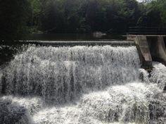 Belfountain Conservation Area (Caledon) - All You Need to Know BEFORE You Go - Updated 2020 (Caledon, Ontario) - Tripadvisor Ontario, Close To Home, Niagara Falls, Conservation, Trip Advisor, Attraction, Travel Destinations, Articles, Canada