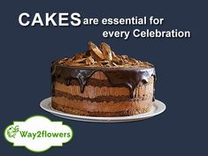 Keep the #relations loved and cushioned with delicious #cakes - https://www.way2flowers.com/cakes Cake Online, Order Cakes Online, Online Cake Delivery, Cake Shop, Wedding Cakes, Patisserie, Cake Ideas, Chocolates, Flowers