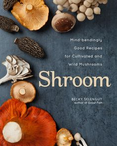 'Shroom,' reviewed by T. Susan Chang - The Washington Post----Links to recipes