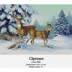 Winter Buck and Doe Linda Picken Art Wildlife Paintings, Wildlife Art, Animal Paintings, Animal Drawings, Illustration Photo, Illustrations, Deer Pictures, Animal Pictures, Mosaic Animals