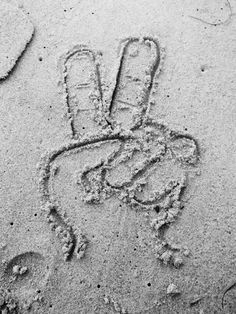 peace and love................