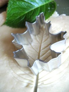 Buy a leaf stamp or fake leaf to make the imprint then use a leaf cutter. HOW CUTE! Maybe use colored dough too