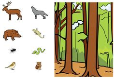 scene picture for sentence building Sentence Building, Educational Activities, Pre School, Sorting, Autism, Logo, Learning, Pictures, Animales