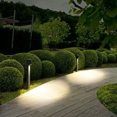 These low-voltage lights help to illuminate a walking path by casting downward pools of light onto the ground. http://www.ylighting.com/blog/landscape-lighting-101/ #LandscapingLighting