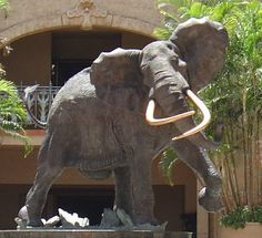 My favorite statue in The Lost City, Sun City, South Africa