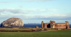 The Bass Rock, Tantallon Castle and the Isle of May in the background, East Lothian, Photo by I. Armstrong.