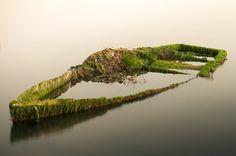 attic-of-the-universe: Sunken boat